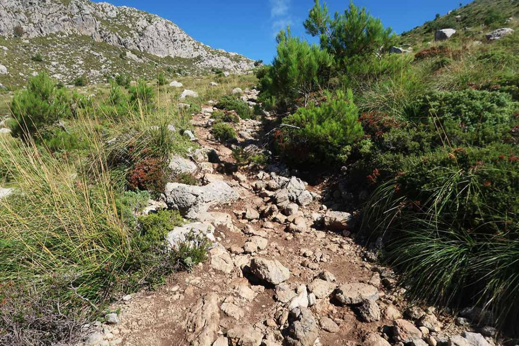 100km Mallorca trails