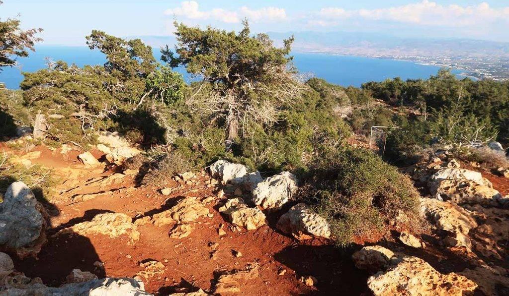 100km Cyprus trails: Aphtodite Bath