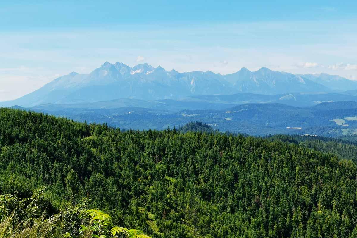 Veterný vrch MTB cykloochutnávka Spišskej Magury