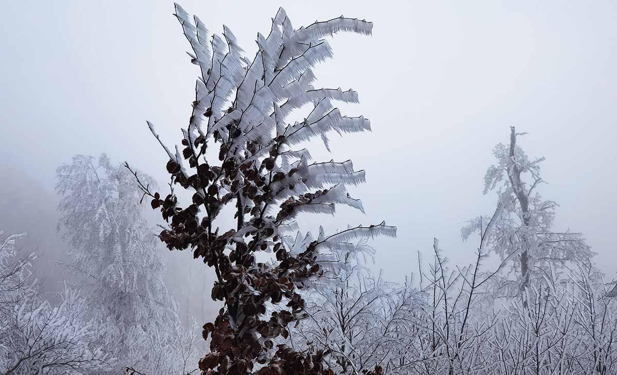 Vyvenčiť starú cez Mystický Marhát: Na hranu jesene a zimy