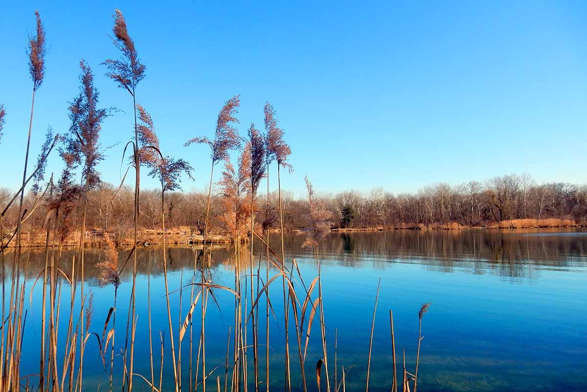 Rusovské jazero a jeho jarné čaro.