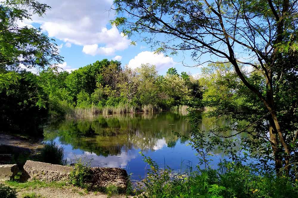 Rusovecké zamyslenia Čuňovské jazerá