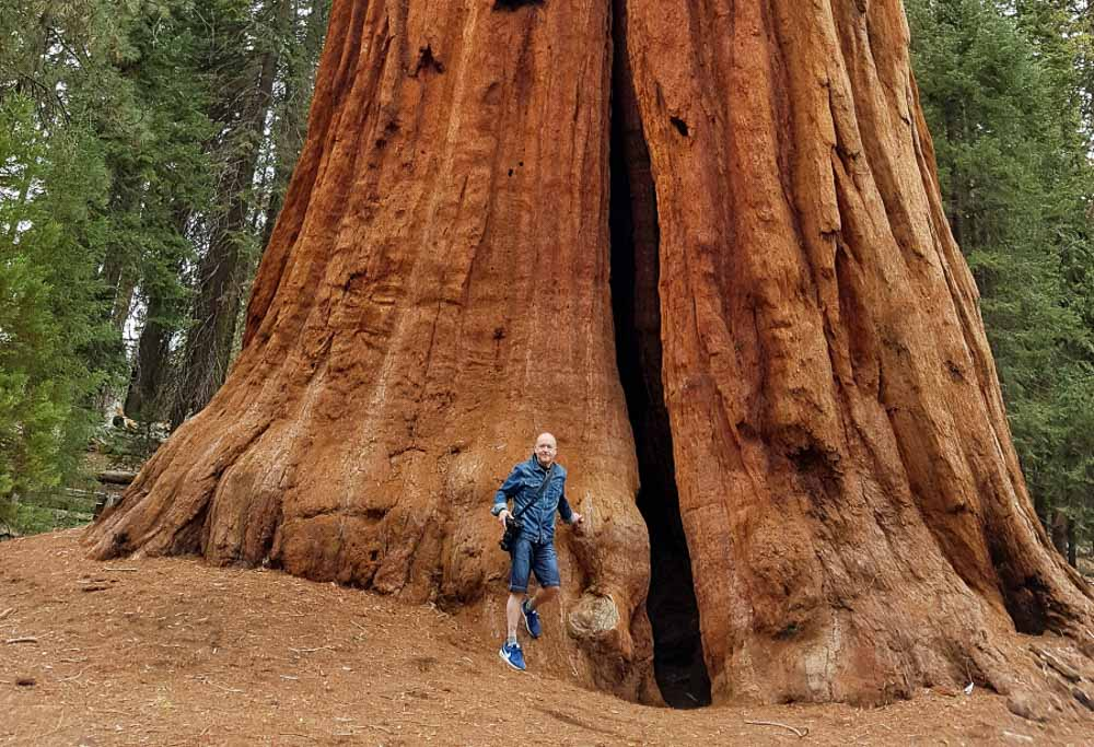 Sequoia park národné parky USA