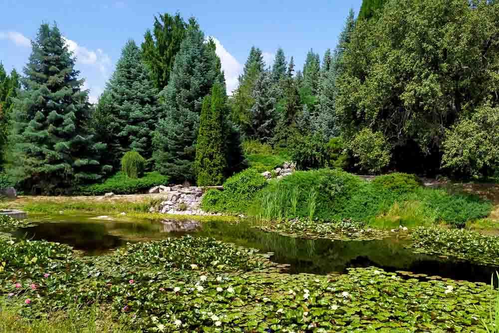 Celodenný výlet z Arboréta Tesárske Mlyňany na hrad Gýmeš